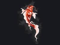 Koi Fish Art Cover