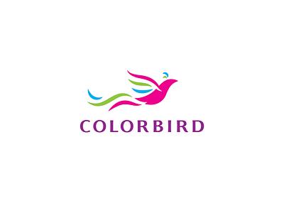 Colorbird flying colorful color bird branding vector design brand logo