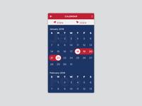 Day 80 – Date Picker