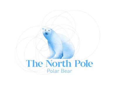 Polar Bear Outline
