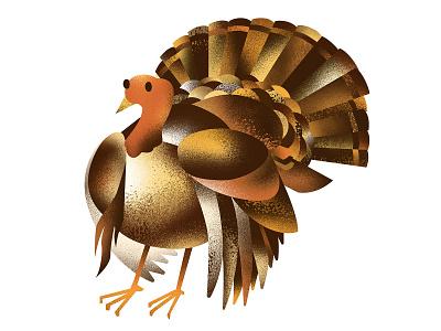 🦃 bird turkey