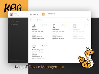 KaaIoT Device Management Dashboard visual ux dailyui webdesign