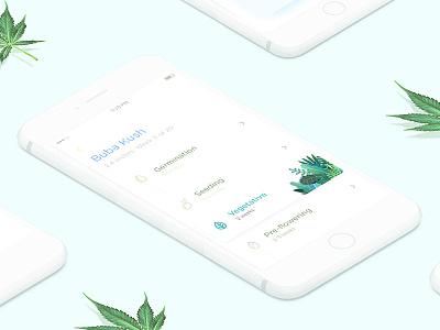 Application for LEAF Growboox weed list timeline green application cannabis groxbox leaf