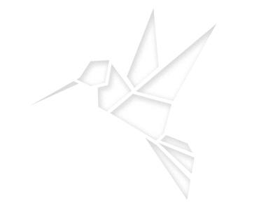Geometric Birdy