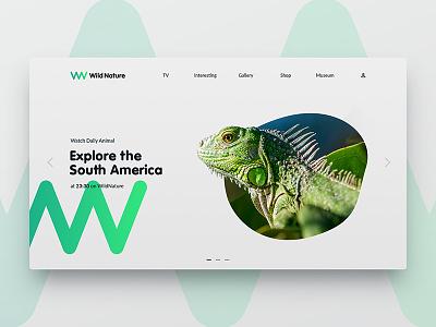Daily Ui WildNature green explore ux ui web iguana nature wild