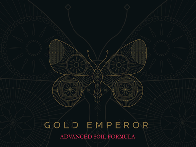 GOLD EMPEROR flying. outlines organic label insect clean minimal simple butterfly icon