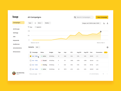 Dashboard for Ad Campaigns saas web app advertising campaign dashboard