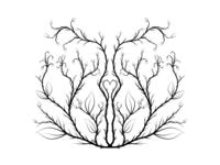 Symmetric Vines