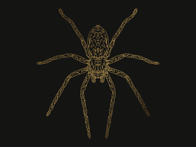 Spider doodle insect gradient gold spider