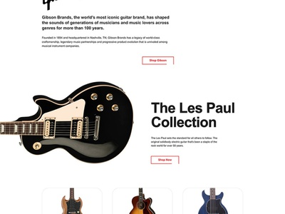 Landing Page for Music Store music guitar website arial white red css grid css