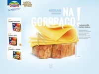 Hochland website concept