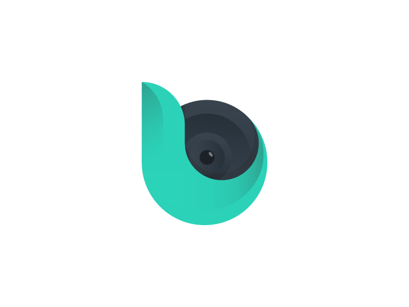 b icon app gradient cam camera monogram logo
