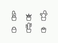 Cactus Mafia!