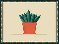 Southwestern Plant BRD 1-16-19