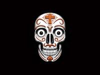 Skull illustration using Procreate