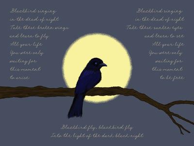 Blackbird_BRD_5-21-19