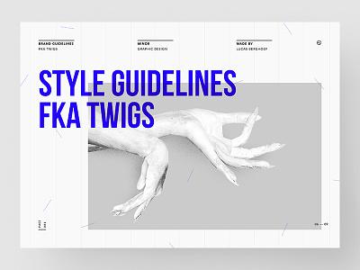 Style Guidelines - FKA twigs design guide style fka twigs