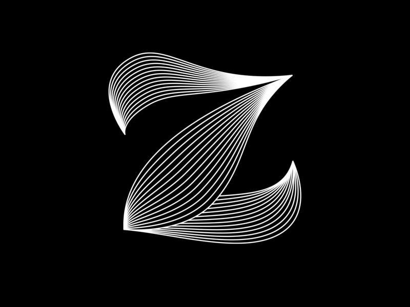 Z lettering 36 days of type lettering minimal black  white fontface typography typeface adobe challenge 36 days of type