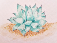 Watercolor Agave