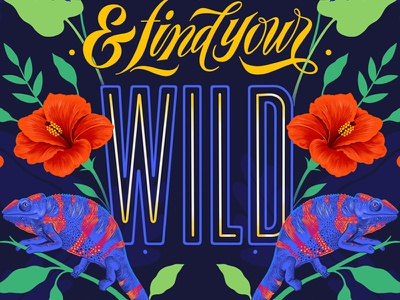 Find Your Wild procreate lettering experimental typography digital lettering custom art typography illustration
