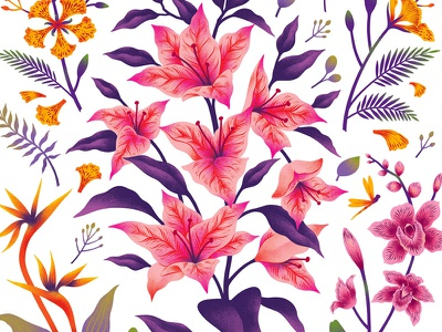 Decals for Asian Paints design wall sticker print botanical floral custom art illustration decal