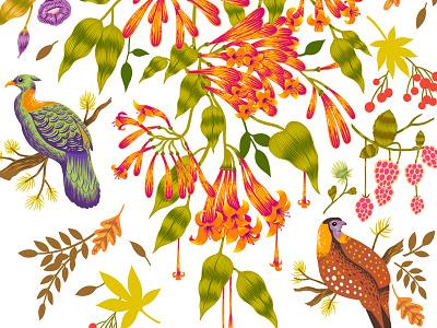 Decals for Asian Paints india wall art print floral botanical illustration decal design botanical illustration custom art