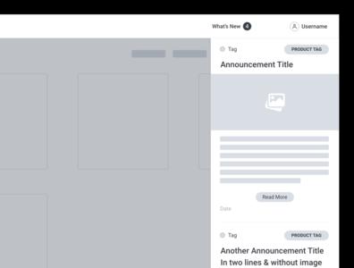Wireframe - What's New sdk customizable experience developer wireframe code sample branding design api ux ui