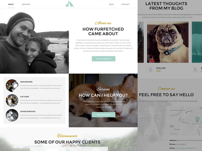 Furfetched Pet care WIP one page web design pet care website gold teal dog cat