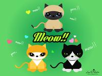 Meow!!