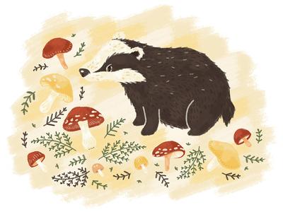 Badger & Mushrooms