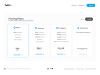 Promotional Website Pricing Page