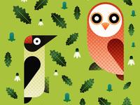 Woodpecker & Owl