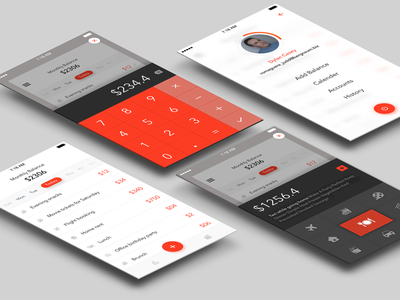 Minimal expense manager App concept sketch principle expense manager