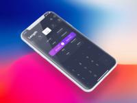 Converter App - iPhone X