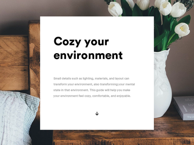 Cozy Your Environment scandinavian typography minimal photography editorial ui relaxation cozy comfort hygge