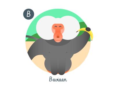B is for Baviaan