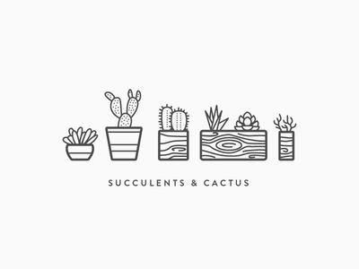 Succulents & Cactus  outline planter simple wood vector line plants cactus succulents