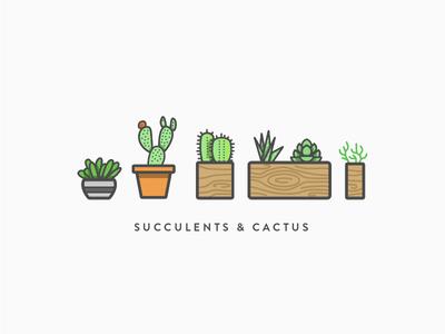 Succulents & Cactus in Color outline planter simple wood vector line plants cactus succulents