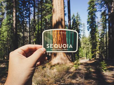 Sequoia National Park Tree logo design badge vinyl sticker national park forrest tree sequoia