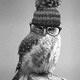Manda·Owla