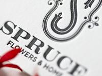 Spruce photography interior graphic branding