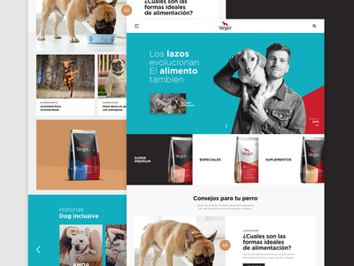 Pet Supplies web design