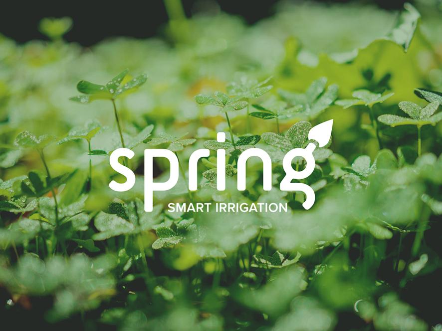 Spring Brand branding interaction design ui ux app