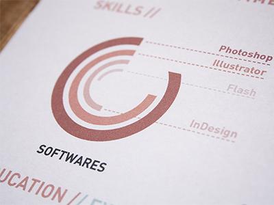 Personal resume resume print behance softwares skills experience chart red blue branding identity cv