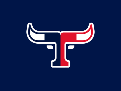 Houston Texans bull nfl football texans houston sports branding sports logo logo design