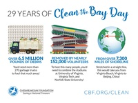 Clean the Bay Day Infographic illustration infographic design