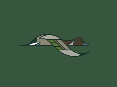 Northern Pintail hunter northern icon illustration logo drake duck pintail