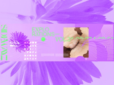 SIDEWAYZ purple flower art direction editorial exploration outside the box design layout web design exploded grid typography grid