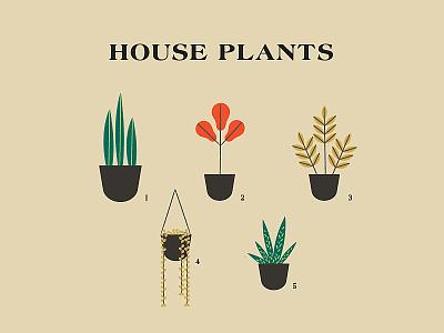 House Plants design vector illustration