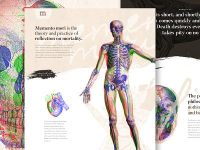 Memento Mori | Mocktober engraving skeleton skulls on skulls graphic  design uidesign web design memento mori skull mocktober